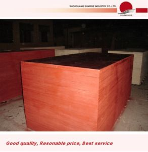 High Grade for Furniture Black Film Faced Plywood