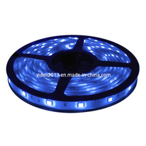 New 3528 SMD Blue Waterproof 12V 5m 300 LED Flexible Strip Light pictures & photos