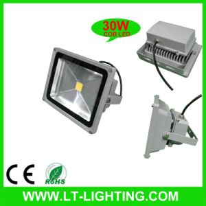 COB LED Flood Light 30W (LT-FL001-30)