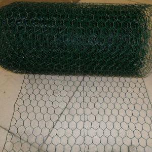 Electro Galvanized Hexagonal Wire Mesh pictures & photos