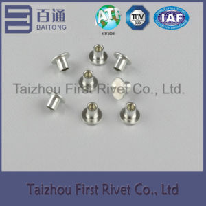 6X6mm White Zinc Plated Flat Head Semi Tubular Steel Rivet pictures & photos