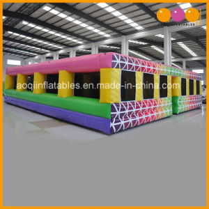 Pink Inflatable Maze for Playground Use (AQ16343) pictures & photos