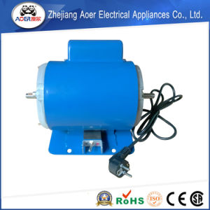 Latest Technology ISO 9001 Factory Modern Design Two Speed Electric Motors pictures & photos