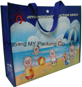 Experienced Factory BOPP Laminated PP Non Woven Shopping Bags pictures & photos