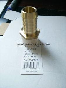 Dzr Brass Male Adapter Fitting Lump End pictures & photos