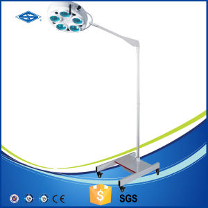 OEM Cold Light Standing Operation Light pictures & photos