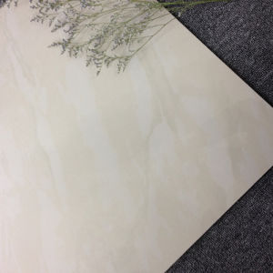 600*600 Decorate Floor and Wall Porcelain Polished Tile pictures & photos