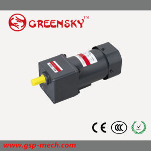 GS 110V/220V 40W 90mm AC Induction Gear Motor pictures & photos
