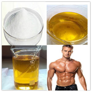 Muscle Building Anabolic Steroid Testosterone Undecanoate Powder or 250mg/Ml Liquid pictures & photos