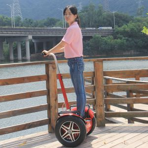 21inch Tyre Big Gear Box Two Wheel Stand up Electric Scooter for Sell pictures & photos