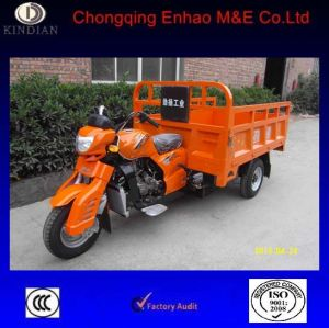 Best Chose for Cargo Tricycle 200cc