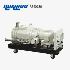 Vacuum System Used Hokaido Dry Screw Vacuum Pump (RSE 180)