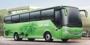 (New) Ankai 24-53seats Coach Bus (A8 Series) (HFF6110K09D1E4B) pictures & photos