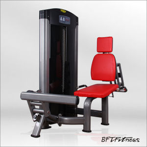 Body Building Exercise Equipment Seated Calf Machine (BFT-3015) pictures & photos