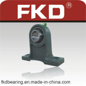 Bearing, Fkd Bearing, Pillow Block Bearing (UCPH) pictures & photos