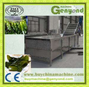 High Efficient Onion Washing Machine pictures & photos