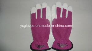 Sheep Leather Glove-Sheep Leather Glove-Working Glove-Safety Glove-Goatskin Glove pictures & photos