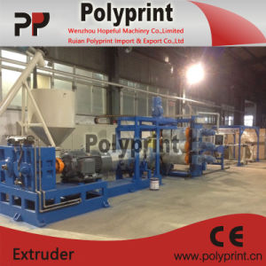 Single Plastic Sheet Extrusion Line (PPSJ-100A) pictures & photos