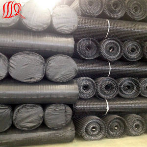 High Strength PP Plastic Biaxial Geogrid pictures & photos
