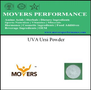 Lowest Price UVA Ursi Natural Herbal Powder pictures & photos