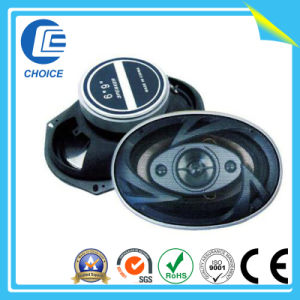 Car Speakers (CH70017) pictures & photos