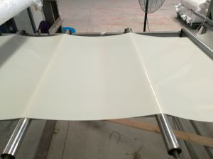 Silicone Rubber Sheet, Silicone Sheets, Silicone Sheeting Made with Virgin Silicone pictures & photos