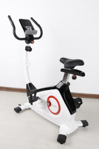Indoor Fitness Bike Magnetic Upright Exercise Bike Home Trainer