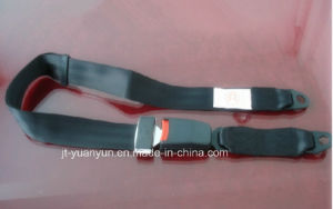 Universal Simple Two-Point Seat Belt pictures & photos