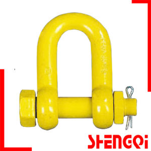 Galvanized Screw Pin Us Type Steel Drop Forged D Shackle pictures & photos