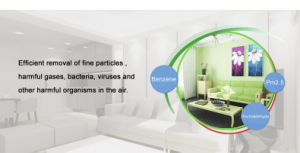 Air Purification Series - Concentrated Air Supple Air Purification Device J pictures & photos