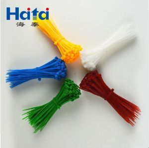 Haitai Plastic Nylon 66 Cable Tie Self-Locking pictures & photos