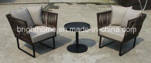 Leisure Sofa Set/Wicker Outdoor Furniture/PE Rattan Weaving Garden Chair (BP-260) pictures & photos