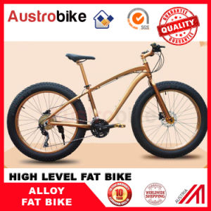 Wholesale The Lowest Price Fatbike Fat Bike 21, 24 Speed 20, 24, 26 Inch Fat Tire Bike Snow Kick Bike for Sale for Sale Free Tax pictures & photos