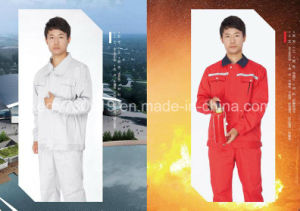Coverall Dungaree Workwear Smock Fatigue Dress Work Clothes Overall School Uniform pictures & photos