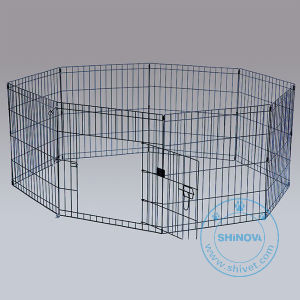 Wire Dog Cage (CG008B) pictures & photos