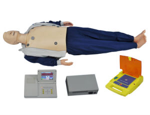 Medical First Aid Human CPR Nursing Training Model pictures & photos