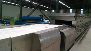 Sh Full-Automatic Factoty Stainless Steel Hard Biscuit Production Line pictures & photos