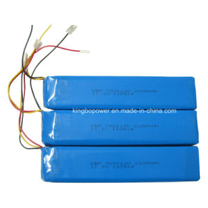 11.1V High Energy Density Rechargeable Lithium Battery (2200mAh)