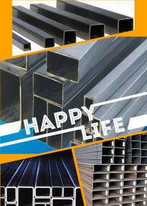 Rectangular/ Square Steel Pipe for Construction