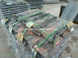 China Multi-Color Red Granite, Mushroom Processing Wall Tile for Outside Project