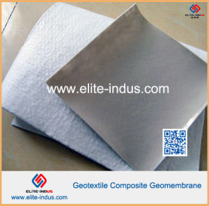 Geotextile Composite Compound Geocomposite LDPE HDPE LLDPE Geomembranes pictures & photos