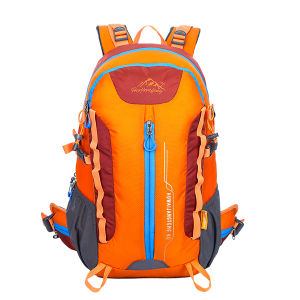 Wholesale Personalized Backpack pictures & photos