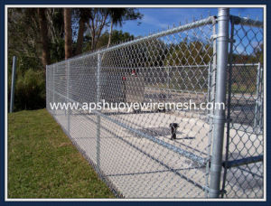 Sainless Steel Wire Chain Link Fence pictures & photos