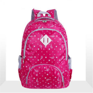 Korean Student Bag Printing Custom Waterproof Backpack The Burden of Students (GB#865) pictures & photos