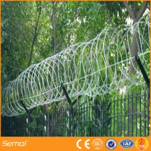 High Security Concertina Razor Wire Fence for Airport and Prision pictures & photos
