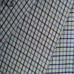 100% Cotton Poplin Woven Y/D Fabric for Clothing Shirts/Dress Rls50-24po pictures & photos