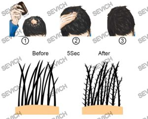Hair Regrowth in Seconds Hair Care Products Hair Fibers pictures & photos