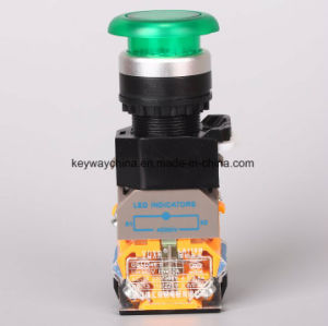 Keyway Illuminated-Mushroom Type Pushbutton Switch pictures & photos
