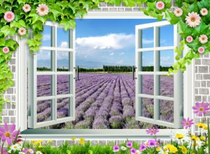 Window Beautiful Sightseeing Lavender Sunset and 3D Oil Painting pictures & photos