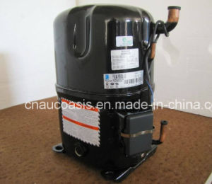 France Tecumseh Hermetique Reciprocating Compressor R134A / R404A/ R22 pictures & photos